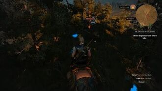 Witcher 3 Tracking Bolt