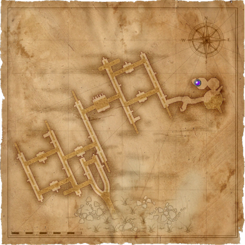 the Elven ruins