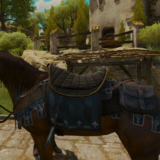 Temerian Horse Equipment