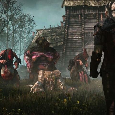 Geralt meets the Crones.