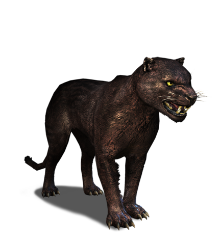 File:Tw3 journal panther.png