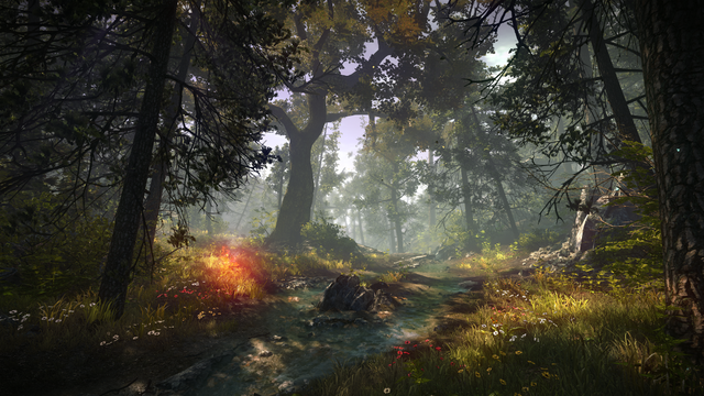 File:The Witcher 2 A Path in the Forest.png