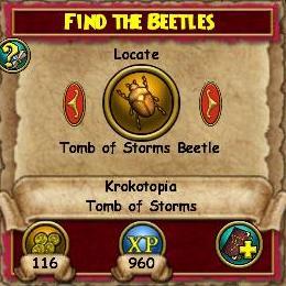 Q KT Find the Beetles