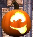 QOBJ WC Happy Pumpkin Gi