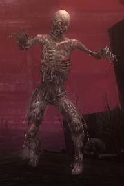Deadly Spawn
