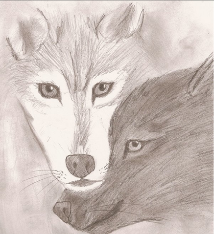 File:Darkfur and wolf.png