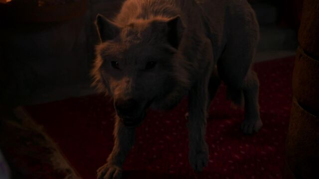 File:Anita in Werewolf Form.jpg