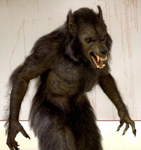 File:WoodsCabin werewolf.jpg
