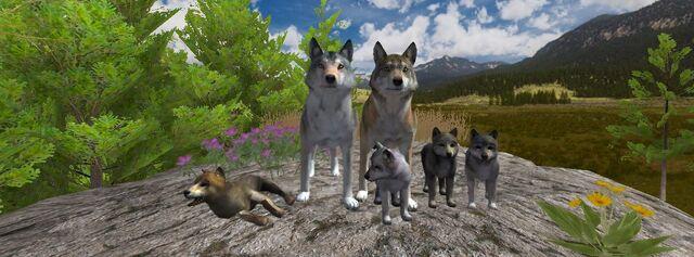 File:Wolfquest 2.7.jpg