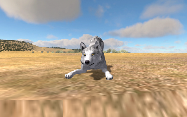 File:WolfQuest Screenshot 3(playfulbowstance).png