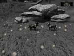 Pup scent trail (2.7)