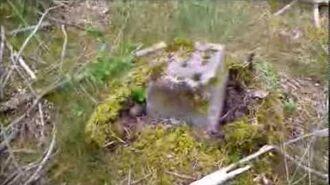 Luftwaffe ww2 dumpsite relics .