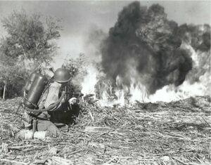 US M2 flamethrower, 33rd Infantry