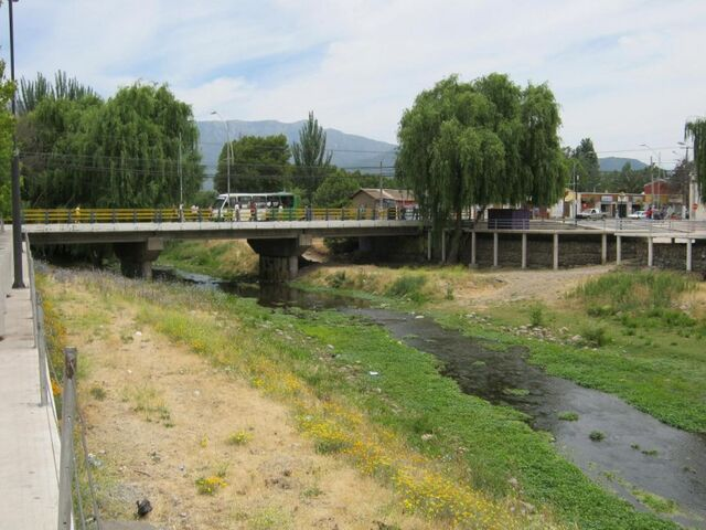 File:Tronco creek Mostazal 006.JPG