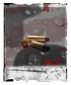 File:44 Magnum Cartridges.png