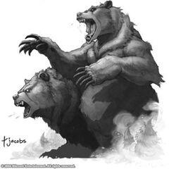 Image of Ursoc