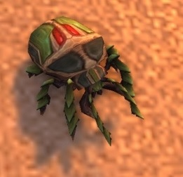 Image of Scarab Hatchling