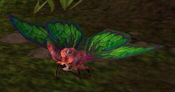 Image of Crimson Moth