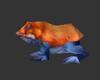 Frog orange