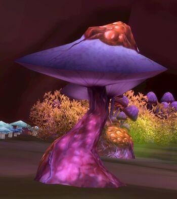 Underbog Mushroom