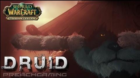 Feral Druid Basic DPS Guide