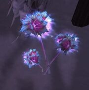 Frost lotus node