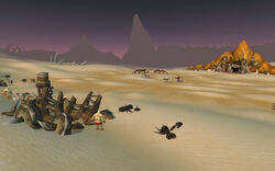 Dunemaul Compound
