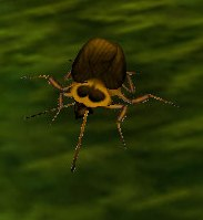 Image of Nether Roach