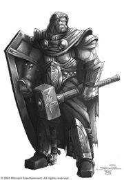 Paladinwarrior