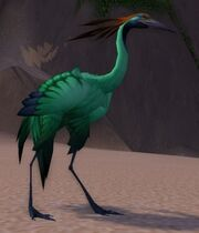 Jade Crane Chick