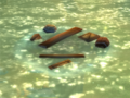 Bloodsail wreckage.png