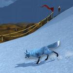 Kun-Lai Summit Arctic-Foxling03