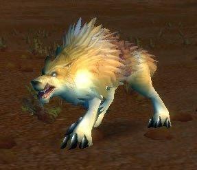 Crag Coyote