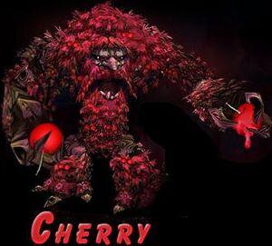 Cherry Ancient W3