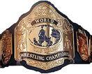 NWA World Tag Team Titles