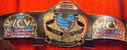 WCW World Tag Team Championship belt