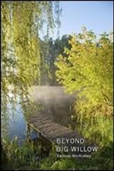 Beyond Big Willow resized