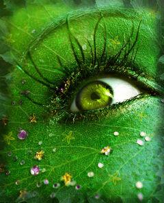 Green eyes 6