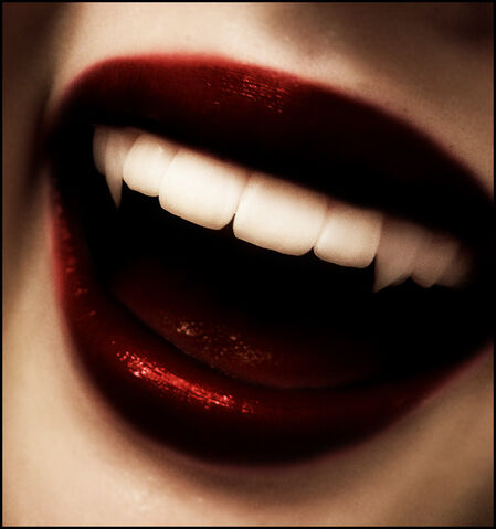File:Vampire Fangs by Evanescent Designs.jpg