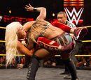 January 25, 2017 NXT