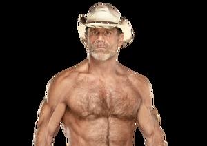 Shawn Michaels pro