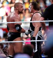 Triple H shaking Sting hand