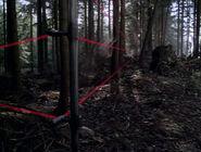Crash Site Invisible Alien Being Fallen Angel