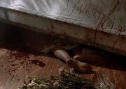 Home Barbara Taylor Dead
