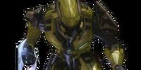 Elite (unit)