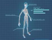 XComEU Thin Man anatomy