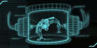 Interrogate Heavy Floater