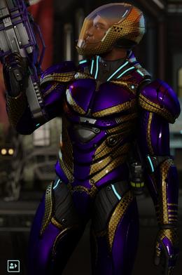 Warden Armor