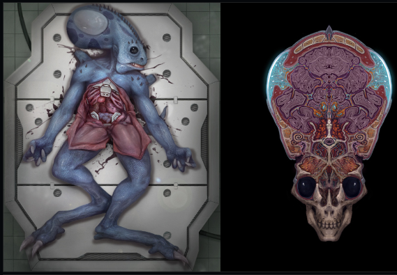 File:Wraith Autopsy.png