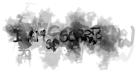 Dialog 2913